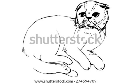lack and white vector sketch of a cat sitting - stock vector