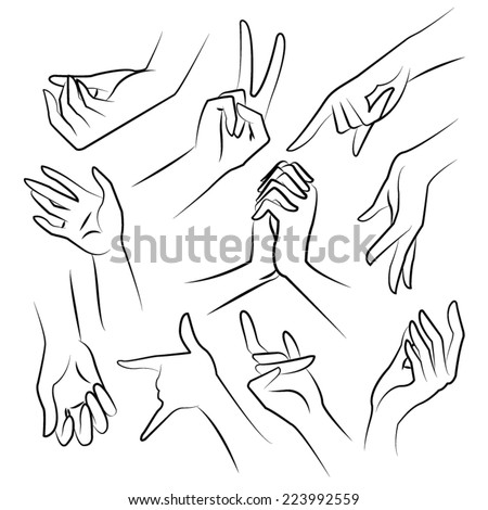 lady hands vector - stock vector