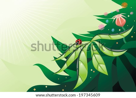 Ladybird on a green leaf, vector