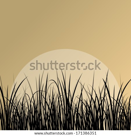 Lake reed and wild water plants detailed silhouettes outdoor illustration background vector - stock vector