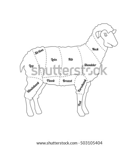 lamb meat thin line farm animal stock vector 503105404
