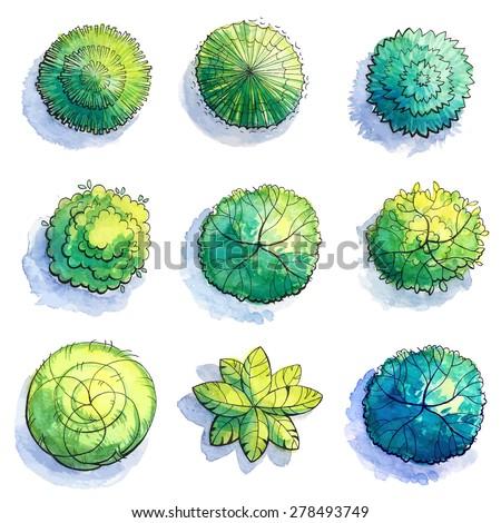 Landscape design. Watercolor tree sketch. - stock vector