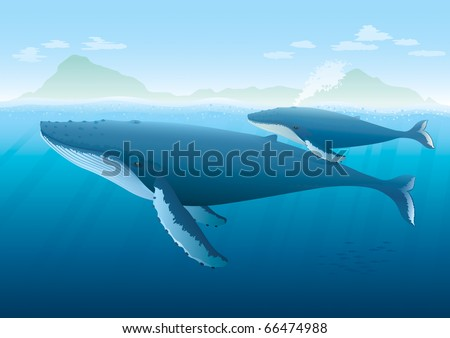 """Landscape with ocean and island with Humpback Whale mother and young whale swimming on surface.  """"Full compatible. Created with gradients. Named in layers."""" - stock vector"""