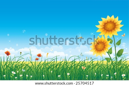 landscape with sunflowers - stock vector