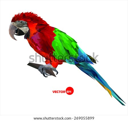 large bird, colorful parrot macaw sitting on a brunch, made in low polygon style on white background, geometric  vector illustration - stock vector