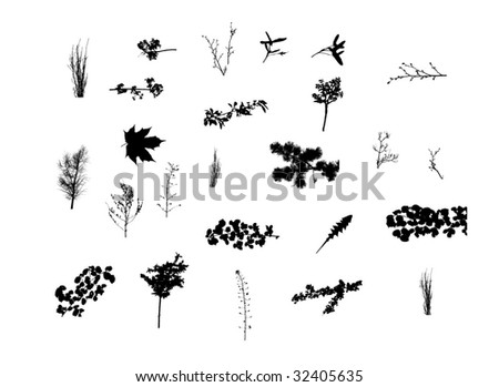 large collection of herbs plants nature silhouettes