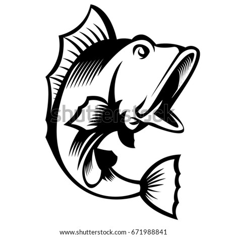 bass fish stock images, royalty-free images & vectors | shutterstock