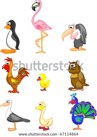 large set of birds include penguins, flamingos, vultures, rooster, chicken, owl, gull, duck, peacock - stock vector
