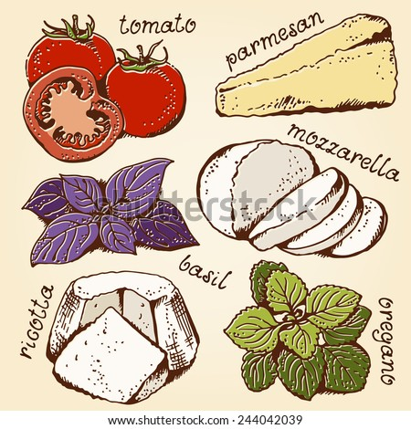 Lasagna ingredients set, hand drawn food collection - stock vector