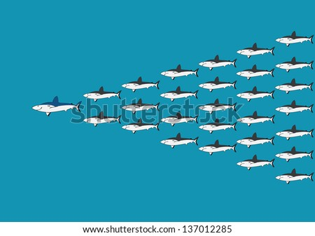 Leadership from Shark pattern - stock vector
