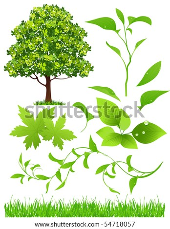 Leaf collection, vector illustration - stock vector