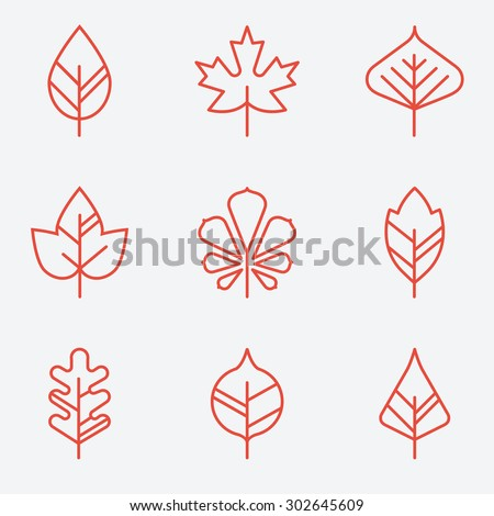 Leaf icons, thin line style, flat design - stock vector