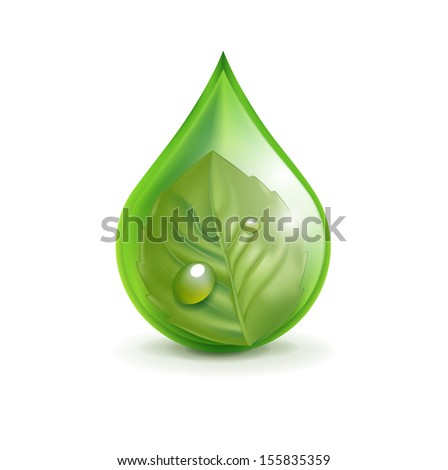 leaf in green droplet isolated on white background - stock vector