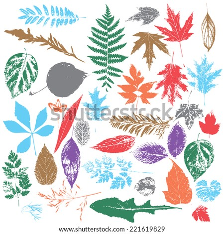 leaf silhouettes in color - stock vector