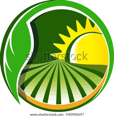 leaf sun farm stock vector royalty free 540900697 shutterstock rh shutterstock com Farm Barn Sweet Farm SVG Free Cartoon Pictures of Farms and Crops Troctors