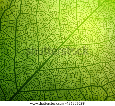 Leaf vector texture pattern. EPS10. - stock vector