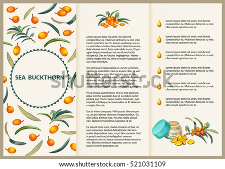 Leaflet sea buckthorn folding paper flyer for brochure presentation. Vector illustration.