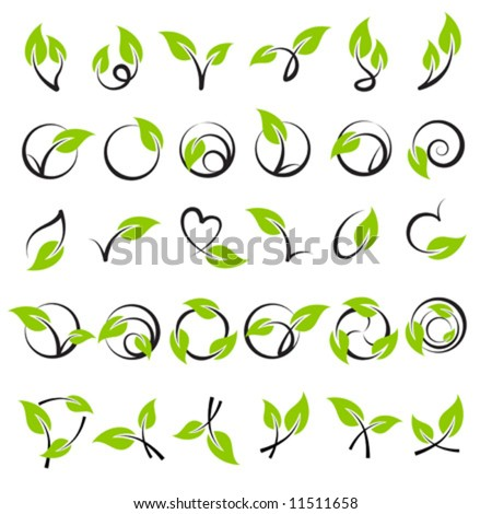 Leaves. Elements for design. Vector illustration. - stock vector