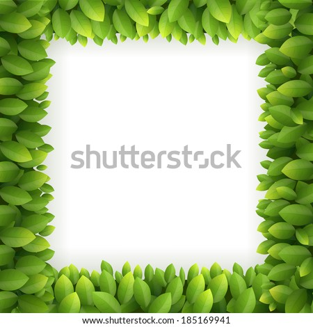 Leaves frame isolated on white background, Vector illustration. - stock vector