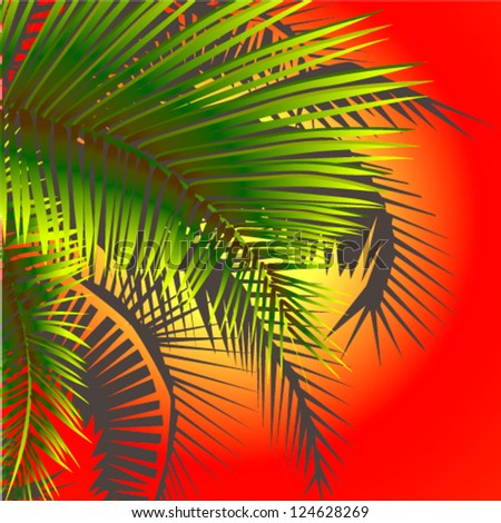 leaves of palm trees at sunset - stock vector