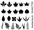 leaves silhouettes - stock