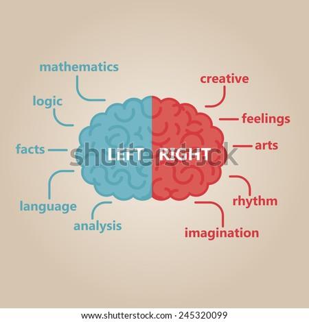 Left & right human brain illustration - stock vector