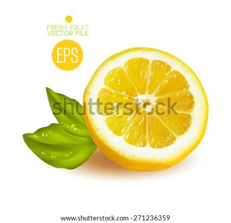 Lemon cut in half. Citrus isolated on white background beautiful fresh fruit. Vector realistic art illustration for advertising packaging carton bottle banner wallpaper.  - stock vector