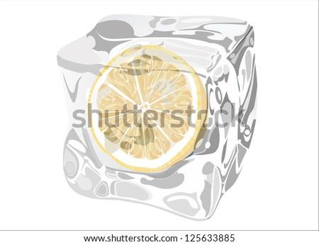 Lemon In Ice Cube - stock vector