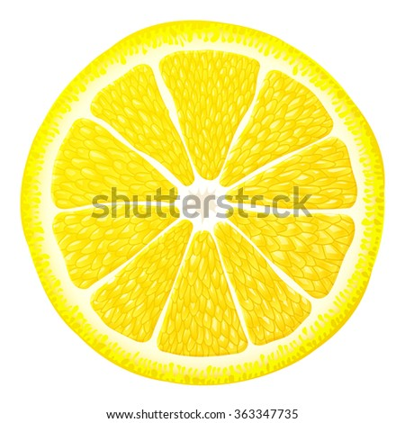 Lemon slice close up. Section of lemon fruit isolated on white background. Vector illustration for food, agriculture, fruits, cooking, gastronomy, etc. It has transparency, blending modes, gradients - stock vector