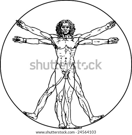 Leonardo da Vinci's vitruvian man in vector - stock vector