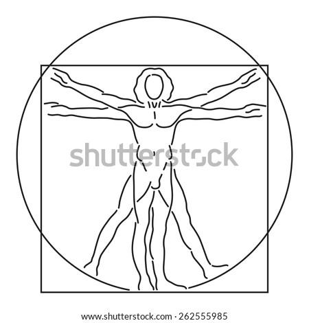 Leonardo Da Vinci Vetruvian Man, human anatomy, Vector Line Art, Black on White, editable  - stock vector