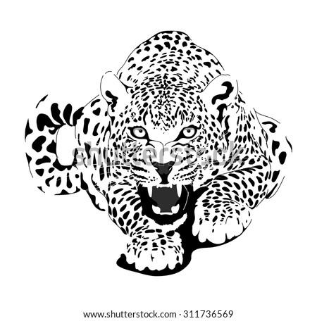 Black jaguar as well T15036474 Firing order 93 ford f150 v6 furthermore  on jaguar straight 6 engine