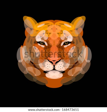 leopard, Vector,  illustration, abstract, animal style, Graphic leopard head front view,  zoo, nature, Good illustration for circus, leopard pattern - stock vector