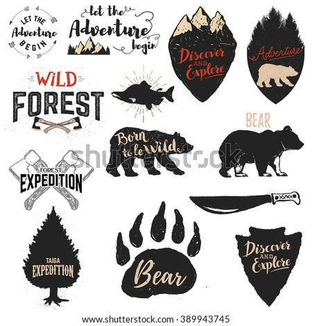 Let the adventure begin, Wild forest, Born to be wild, Discover and explore. Expedition labels and emblems. Set of the vector design elements and templates for labels, badges, emblems, signs. - stock vector