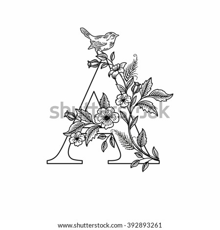 Letter A with flowers and bird, linear figure, vector