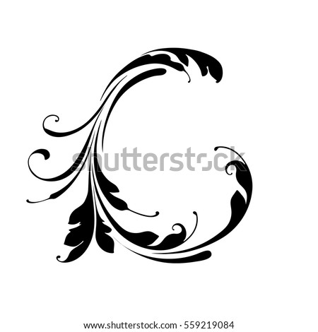 Letter C Hand Drawing With Flowers Lines Swirls Part Of The Art