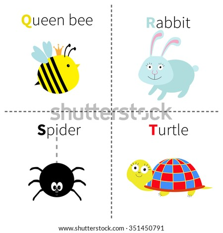 Letter Q R S T Queen bee Rabbit Spider Turtle Zoo alphabet. English abc with animals Education cards for kids Isolated White background Flat design Vector illustration - stock vector