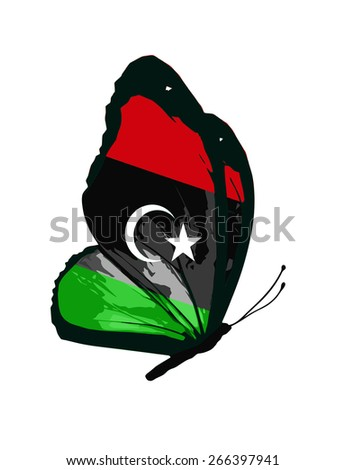Libyan flag butterfly - vector