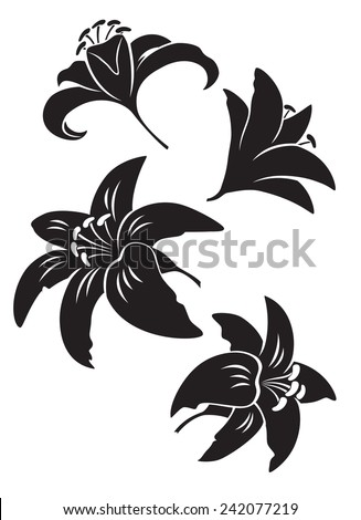 lily flower - stock vector