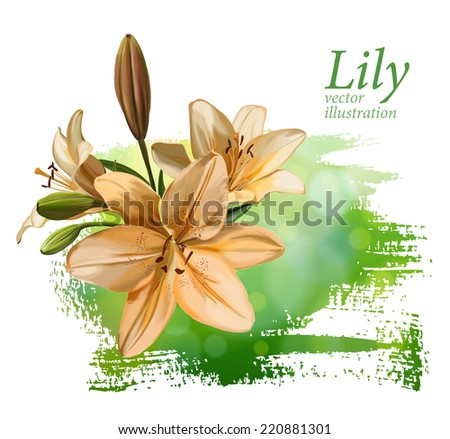 Lily flower on green background. Vector drawing / Eps10 - stock vector