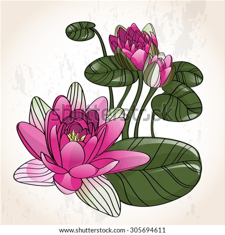 Lily flower vector delicate rosebud beautiful vector
