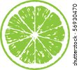 lime vector illustration - stock photo