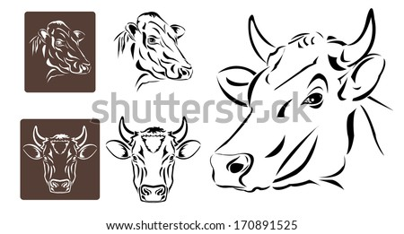 Line art of cow's head on white background - stock vector