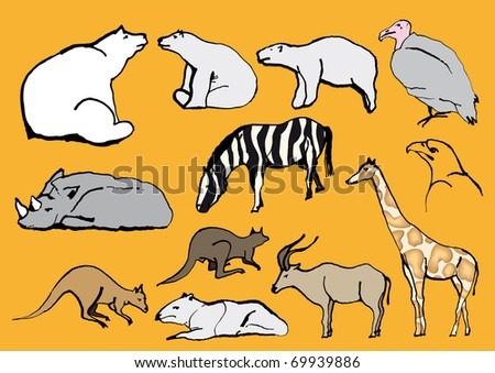 Line drawing exotic animals zoo stock vector