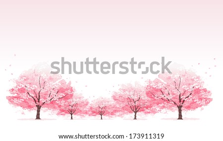 Line of cherry blossom tree background - stock vector