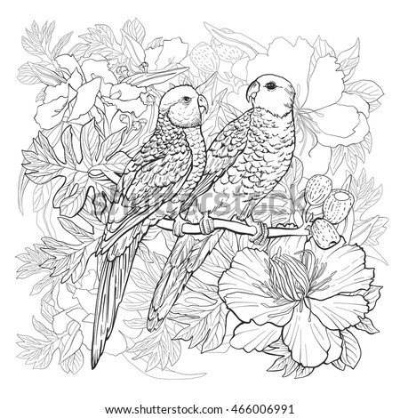 Linear drawing of two parrots and exotic flowers for coloring book.