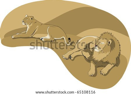 lion and lioness - stock vector