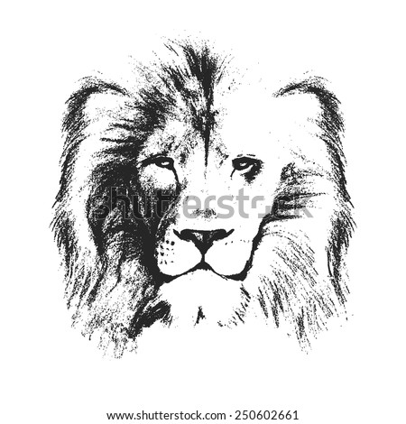 lion head. hand drawn. vector illustration - stock vector