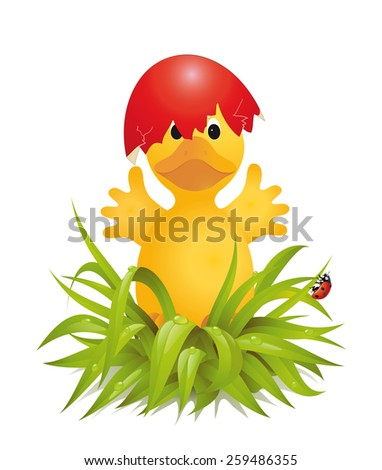 Little chicken coming out of a red egg  Vector illustration isolated on white background - stock vector