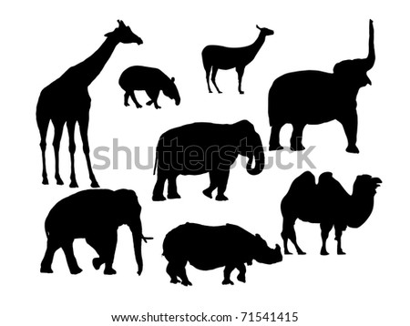 little group african animals